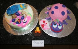 creative cakes - cake workshop